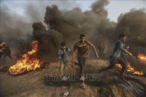 Xung đột ở Dải Gaza khiến nhiều người thương vong