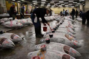 Chợ cá Tsukiji nổi tiếng đóng cửa sau 83 năm kinh doanh