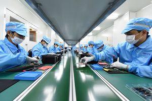 Hợp tác công nghệ Việt Nam-Nhật Bản: 'Đánh chiếm' thị trường nhân lực