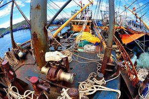Bình Định - ngư dân mắc nợ