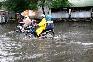 Cà Mau: Đường biến thành 'sông' sau cơn mưa như trút nước