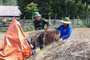 Tuổi trẻ BĐBP Nghệ An tổ chức nhiều hoạt động giúp dân thiết thực
