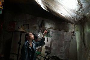 Người phụ nữ nghèo 5 năm bị ngừng cấp điện: Điện lực Thừa Thiên - Huế lý giải