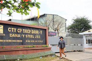 Công bố kết luận thanh tra hai nhà máy thép Dana-Ý, Dana-Úc