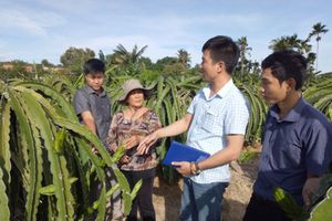 Sử dụng phân bón hữu cơ, nông nghiệp mới bền vững!