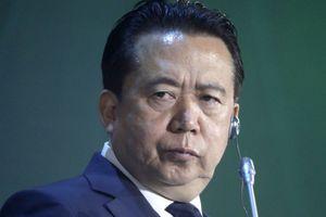 Cựu chủ tịch Interpol - từ người săn cáo đến con cáo bị săn