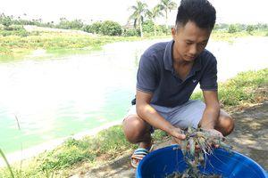Bảo đảm nguồn cung thủy sản cho Thủ đô