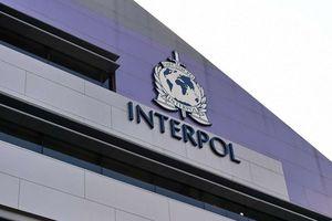 'Bóc trần' sự thật về tổ chức cảnh sát hình sự quốc tế Interpol