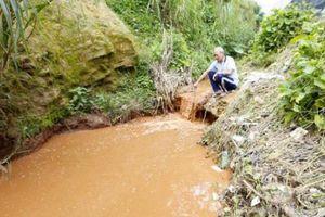 Khốn khổ vì nước thải từ chợ nông sản Đà Lạt