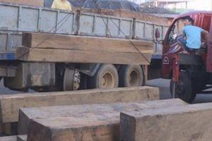 Nửa đêm bắt vụ vận chuyển hàng chục khối gỗ không giấy tờ hợp pháp