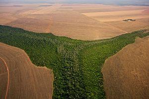Kiểm soát hiện tượng nóng lên toàn cầu: Nhiệm vụ bất khả thi?