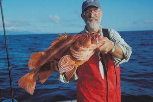 Chân dung loài cá cực dị 'đã xấu lại còn sống lâu'