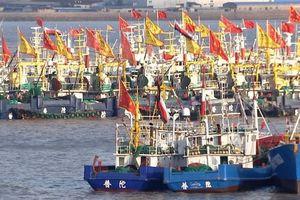 Đội tàu cá hùng hậu của Trung Quốc vét sạch các đại dương