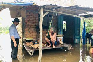 Hàng chục hộ dân khốn khổ vì triều cường, nước lũ