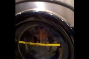 Bé trai 3 tuổi mắc kẹt trong máy giặt vì trò đùa của chú