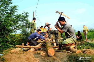 Hàng trăm dân bản rẻo cao Nghệ An làm cầu dân sinh sau lũ