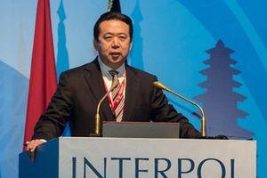 Tin nhắn cuối cùng của cựu Giám đốc Interpol gửi cho vợ trước khi bị bắt