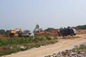 Thị xã Thái Hòa (Nghệ An): 'Đất tặc' lộng hành sao không bị xử lý?