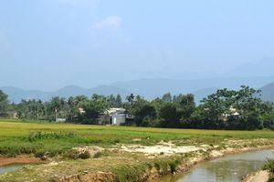Đà Nẵng: Để xảy ra vi phạm đất đai, chủ tịch huyện bị truy trách nhiệm