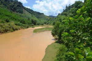Quảng Nam: Khởi động Dự án 'Hành lang bảo tồn đa dạng sinh học Tiểu vùng Mê Công mở rộng - Giai đoạn 2'