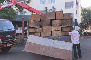 Giám đốc Công an Đắk Lắk trực tiếp bắt xe chở gỗ lậu trong đêm
