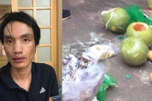 Hải Phòng: Bắt nhóm đối tượng giấu ma túy trong 3 quả bưởi