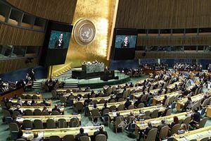 Mẫu số chung Liên Hiệp Quốc