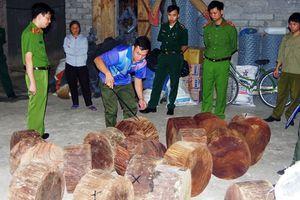 Mật phục bắt đối tượng vận chuyển gỗ lậu