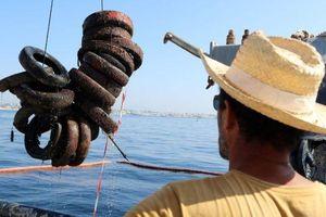 Pháp quyết tâm loại bỏ rạn san hô nhân tạo bằng lốp xe