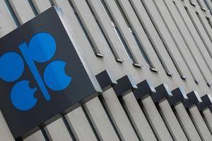 Chính quyền Trump muốn kiện OPEC?