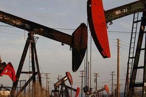 Giá dầu thế giới 9/10: Giá dầu vẫn dập dình tăng giá
