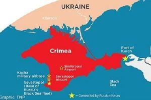 Mục đích thành lập phong trào kêu gọi công nhận Crimea của Nga ở Thổ Nhĩ Kỳ