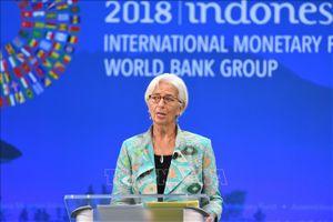 Nền kinh tế của Indonesia đang được quản lý rất tốt, không cần trợ giúp của IMF