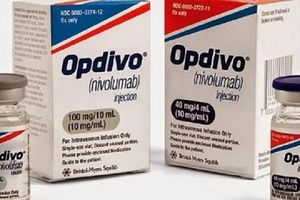 Lạ lùng: Mua thuốc trị ung thư Optivo dễ như ... mua rau!