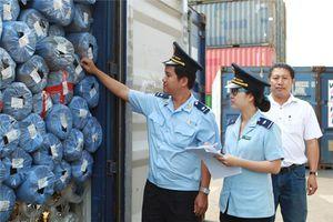 Hải quan TP.HCM truy thu hơn 2 tỷ đồng vì khai nhập hải quan sai