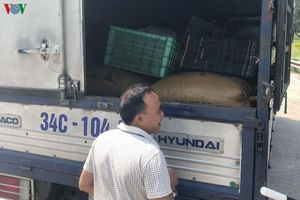 Xuất hiện nhiều phương thức vận chuyển than lậu tại Quảng Ninh