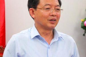 Chủ tịch Bình Định phê bình lãnh đạo TP vì chậm trễ công việc
