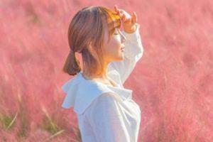 Cánh đồng cỏ hồng ở Hàn Quốc khiến Thúy Vân mê mẩn 'sống ảo'