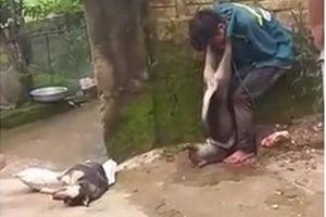 3 công an bị phơi nhiễm HIV khi vây bắt trộm chó