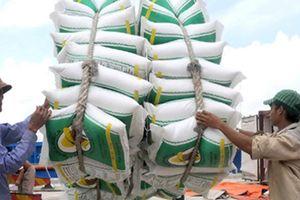 Kinh doanh xuất khẩu gạo sẽ yên tâm hơn về nguồn vốn