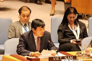 Việt Nam phát biểu tại phiên họp Ủy ban Pháp lý Đại hội đồng LHQ