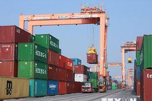 Thu ngân sách ngành hải quan có thể đạt 300.000 tỷ đồng năm nay