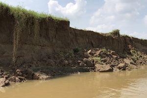 Cẩm Thủy (Thanh Hóa): Sạt lở đất bờ sông Mã khu vực xã Cẩm Vân là đúng thực tế
