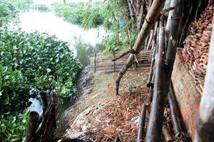 Quảng Nam: Mưa bão cận kề, thấp thỏm nỗi lo sạt lở bờ sông