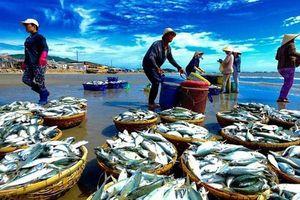 9 tháng năm 2018: Tổng sản lượng thủy sản ước tính đạt 5.501,2 nghìn tấn