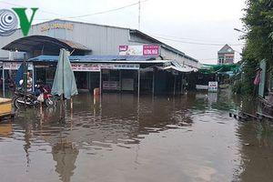 Triều cường dâng cao ở Vĩnh Long, hàng chục công trình thủy lợi bị vỡ