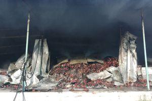 Cháy kho chứa 260 tấn thanh long ở Bình Thuận