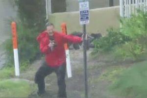 Phóng viên Mỹ suýt bị gió thổi bay trong siêu bão Michael