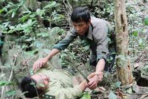 Khởi tố 5 thanh niên đánh nhân viên bảo vệ rừng, cướp tài sản