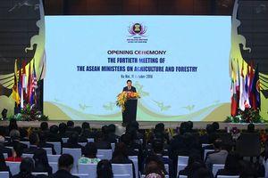 Khai mạc Hội nghị Bộ trưởng nông lâm nghiệp ASEAN lần thứ 40
